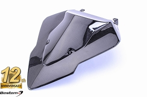 BMW S1000RR 100% Carbon Fiber Racing Tail Cowl, Twill Weave ,